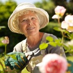 Relying on Friends and Neighbors to Help Garden when Extra Care for the Senior is Necessary